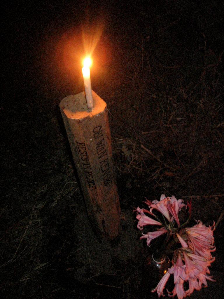 Tumba de Obi-wan kenobi. Febrero,2010. La Casona Solariega, Villa alegre.Chile.