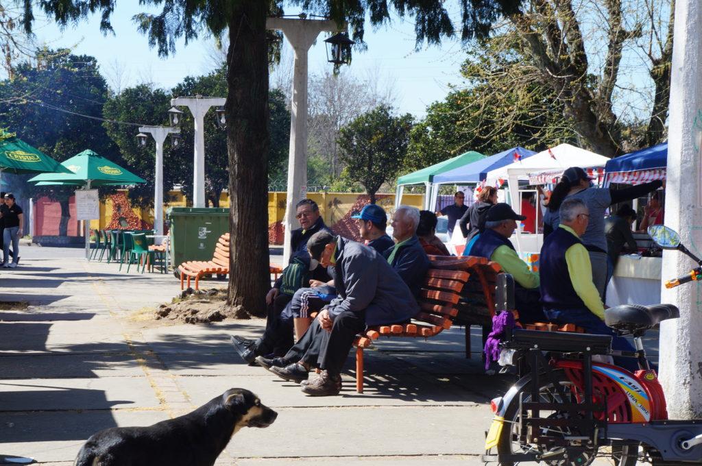 Puestos de venta del concurso de la Fiesta Pie de Naranja. Plaza de Armas de Villa Alegre. Septiembre,2016.